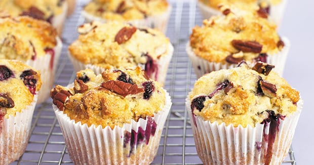 Blueberry and Pecan Muffins recipe by Kenwood New Zealand
